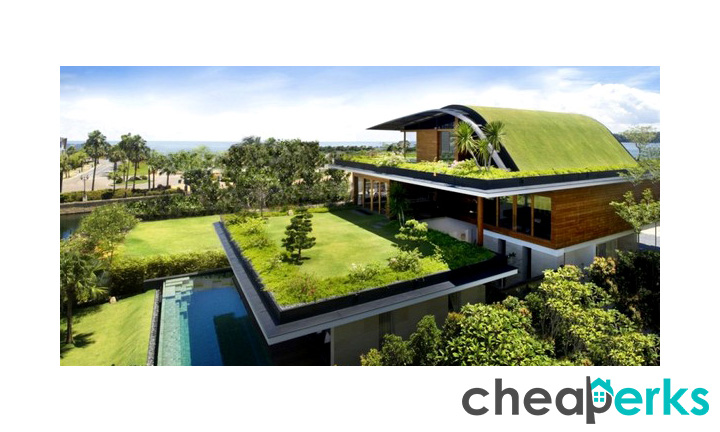 Green Roof or Eco Terrace