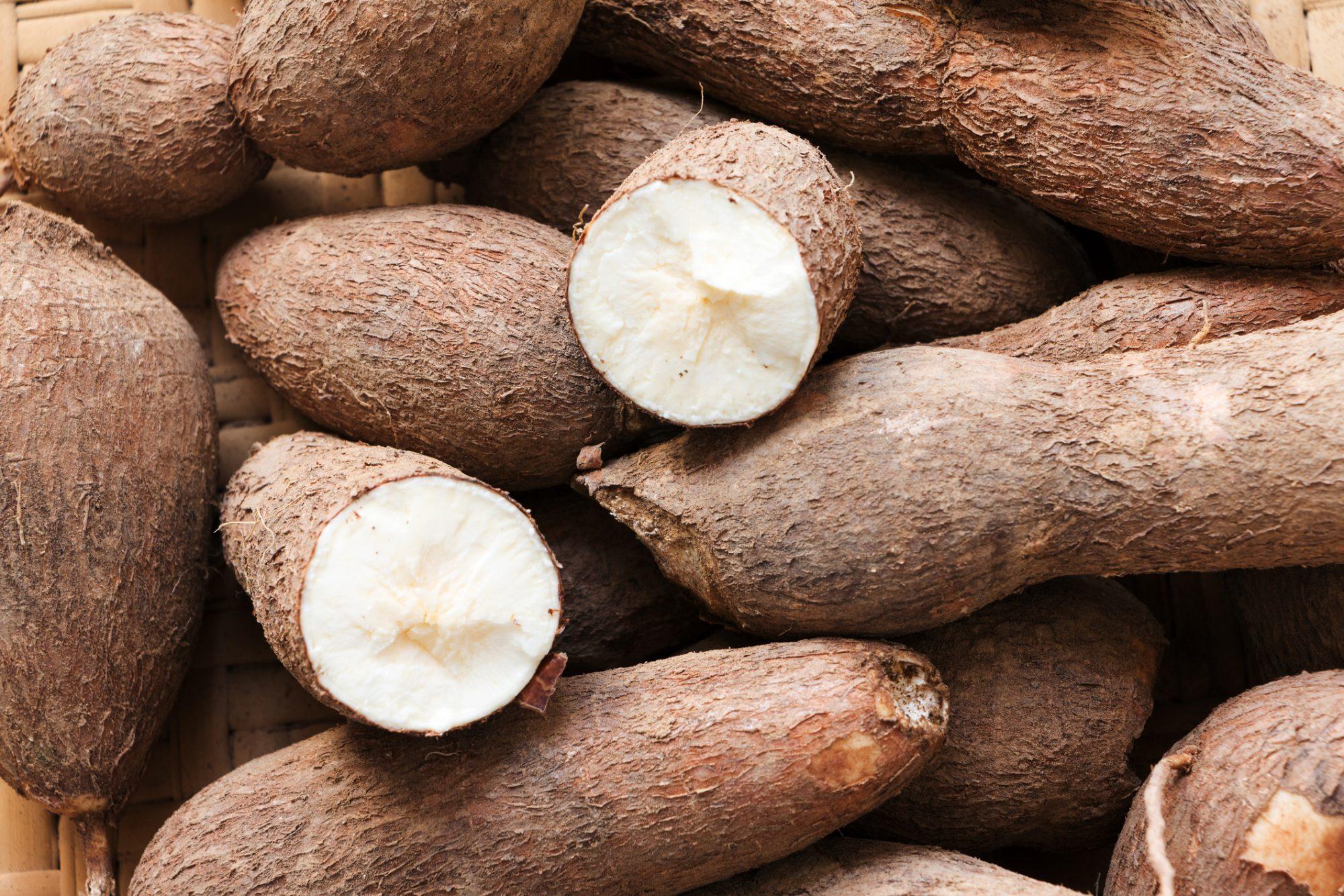 cassava crepe erase