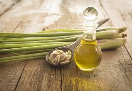 lemongrass - best essential oil for acne scars